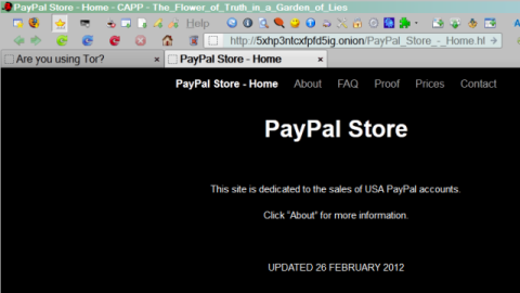 The PayPal Store Home Page