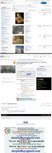 gangsu2007 eBay hacked