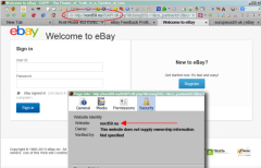 Hacked ebaY Listings with Fake Login Page and Phone Number ASQ